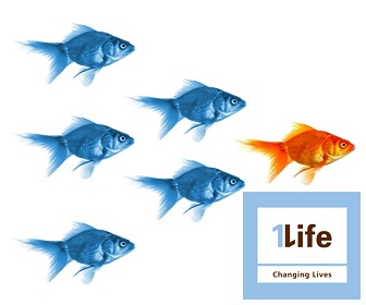 Life Cover Online